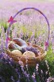 Basket with sweet-stuff in purple lavender flowers Stock Photo
