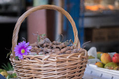 Basket of tamarinds stock images
