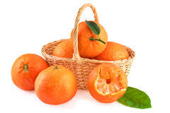 Basket of Tangerines Isolated on White Royalty Free Stock Images
