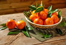 Basket with tasty tangerines Stock Image