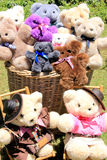 Basket with Teddies Stock Image