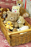 Basket of teddy bears Royalty Free Stock Images