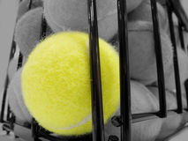 A basket of tennis ball Royalty Free Stock Photo