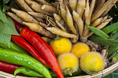 Basket of Thai home grown vegetable. Thai home grown vegetable for making spicy food Royalty Free Stock Image