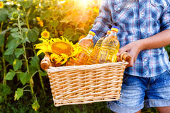 Basket with three bottles of sunflower oil in hands of girl Royalty Free Stock Photo