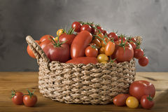 A basket of tomatoes. A basket with a variation of  tomatoes Royalty Free Stock Photography