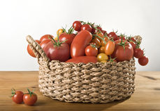 A basket of tomatoes. A basket with a variation of  tomatoes Stock Image