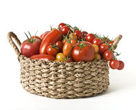 A basket of tomatoes. A basket with a variation of  tomatoes isolated on white Royalty Free Stock Image