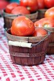 Basket of Tomatoes Royalty Free Stock Photos