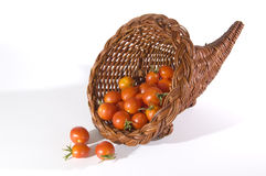 Basket of Tomatoes 2 Stock Image