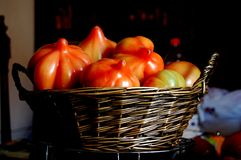 Basket with tomatoes Stock Photo