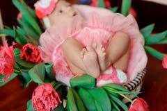 Little feet Stock Photos