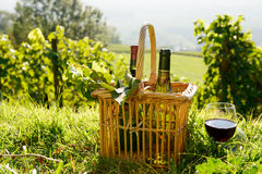 Basket and two bottles of wine with a vineyard Royalty Free Stock Image