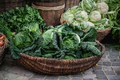 Basket with various cabbages Savoy , romanesco, cauliflower, white head , broccoli, brussels sprouts, Chinese Stock Photos