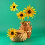Basket and vase with camomiles Royalty Free Stock Image