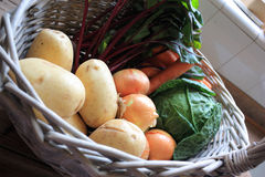 Basket of Vegetables Royalty Free Stock Photos