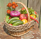 A basket of vegetables Royalty Free Stock Images