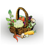 Basket with vegetables. Hand-drawn basket with various natural vegetables on a white background vector illustration