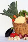 Basket and vegetables. Isolated basket and vegetables and natural light Royalty Free Stock Photo