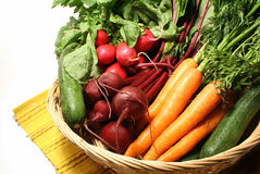 Basket of Vegetables. Basket with a variety of farm fresh vegetables just picked from local farm Royalty Free Stock Photography