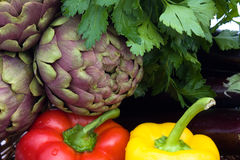 Basket With Vegetables - Closeup Stock Photography