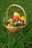 Basket with vegetables is on the grass. Wicker Basket with vegetables is on the grass Royalty Free Stock Image