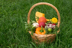 Basket with vegetables is on the grass. Wicker Basket with vegetables is on the grass Stock Images