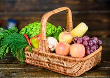Basket with vegetables. harvest festival. basket with useful fruit and vegetables. rich autumn crop. seasonal vitamin stock photos