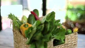 Basket with vegetables. stock video