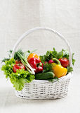 The basket of vegetables. Tomatoes, cucumbers, peppers, radishes. The basket of vegetables.  Selective focus Royalty Free Stock Photography