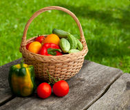 Basket of vegetables on wooden garden table Stock Photo