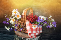 Basket with viburnum, and wildflowers bluebells and daisies on a red napkin in the sun . Wooden background. Royalty Free Stock Photo