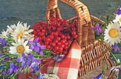 Basket with viburnum, and wildflowers bluebells and daisies on a red napkin in the sun . Wooden background. Stock Photo