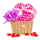 Basket with violet crocus flowers  and gift box Royalty Free Stock Photography