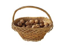 Basket of walnut isolated on white Royalty Free Stock Photo