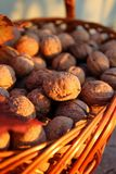 Basket of walnuts. Collected in the basket of walnuts Stock Photography