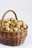 A basket of walnuts Royalty Free Stock Photos
