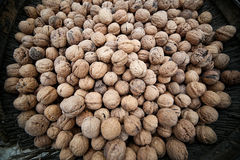 Basket of walnuts on a market square. A lot of nuts Royalty Free Stock Photos