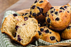 Basket of warm blueberry muffins Royalty Free Stock Photography