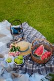 Basket with watermelon, bowl with green apples, bouquet of pink roses, straw hat, basket with blue bottle, books and walnuts. stock photo
