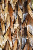 Basket weave. Background Royalty Free Stock Images