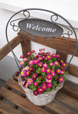 Basket of welcome flowers Stock Image