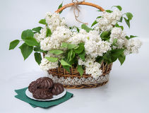 Basket of white lilac with lace with marshmallow chocolate Royalty Free Stock Photo