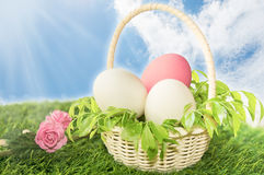 Basket of white and pink easter eggs Stock Images