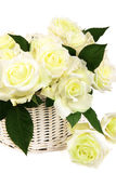 Basket of white roses Stock Photo
