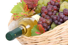 Basket with white wine and grapes Royalty Free Stock Images