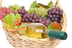 Basket with white wine and grapes Stock Image
