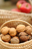 Basket of whole walnuts Stock Images