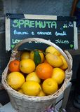 Basket in wicker with lemons and oranges of the place - La Spezi. Around Liguria in some of romantic and little countries - Italy Royalty Free Stock Photography