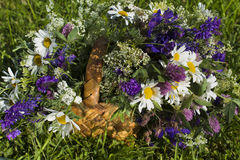 Basket with wild flowers, chamomile, clover and weasel Stock Image